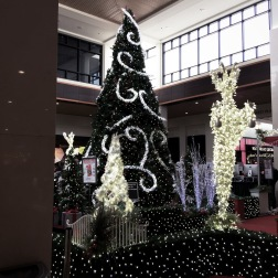 Xmas 16: SouthPark Mall